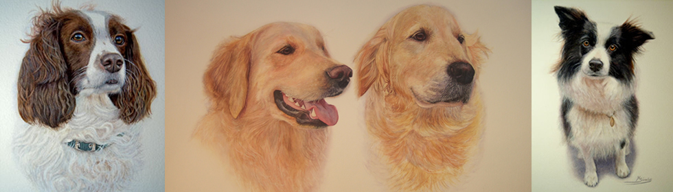 Pet Dog Portraits
